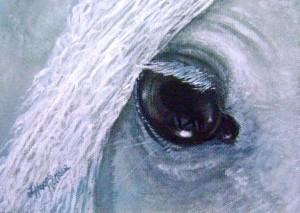 unicornsquest's Profile Picture