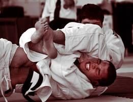 Judo by Jules-bonnot
