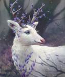 Gentle Deer by Selenada