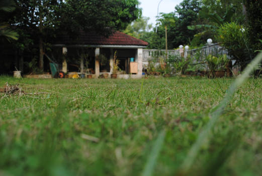 Hey, it's a lawn :D