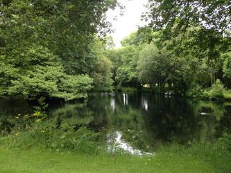 Hidden Lake by IncensedShedinja