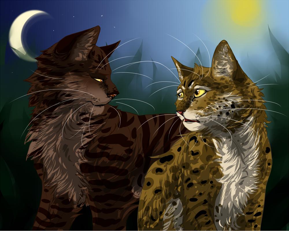 Warrior Cats Novellas
