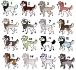 25 Point Mystery Dog Adopts 3 - CLOSED