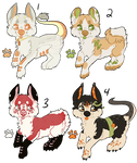 Sushi Dragon Doggies - Offer to Adopt - CLOSED