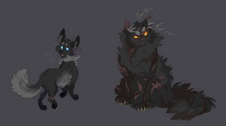 Cinderpelt and Yellowfang by WeHaveCandy