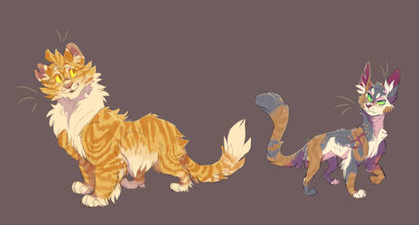 Lionblaze and Tawnypelt by WeHaveCandy