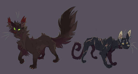 Hollyleaf and Nightstar by WeHaveCandy