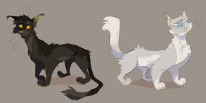 Graywing and Clearsky