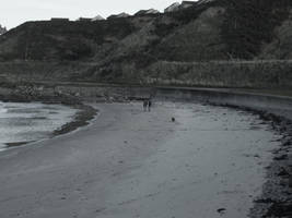 A long walk on a beach. by mortified-Archie