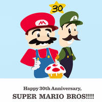 Super Mario Bros 30th Anniversary