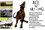Ace the Bat-Dog History by FreakTerrorizes