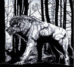 The Man-Wolf