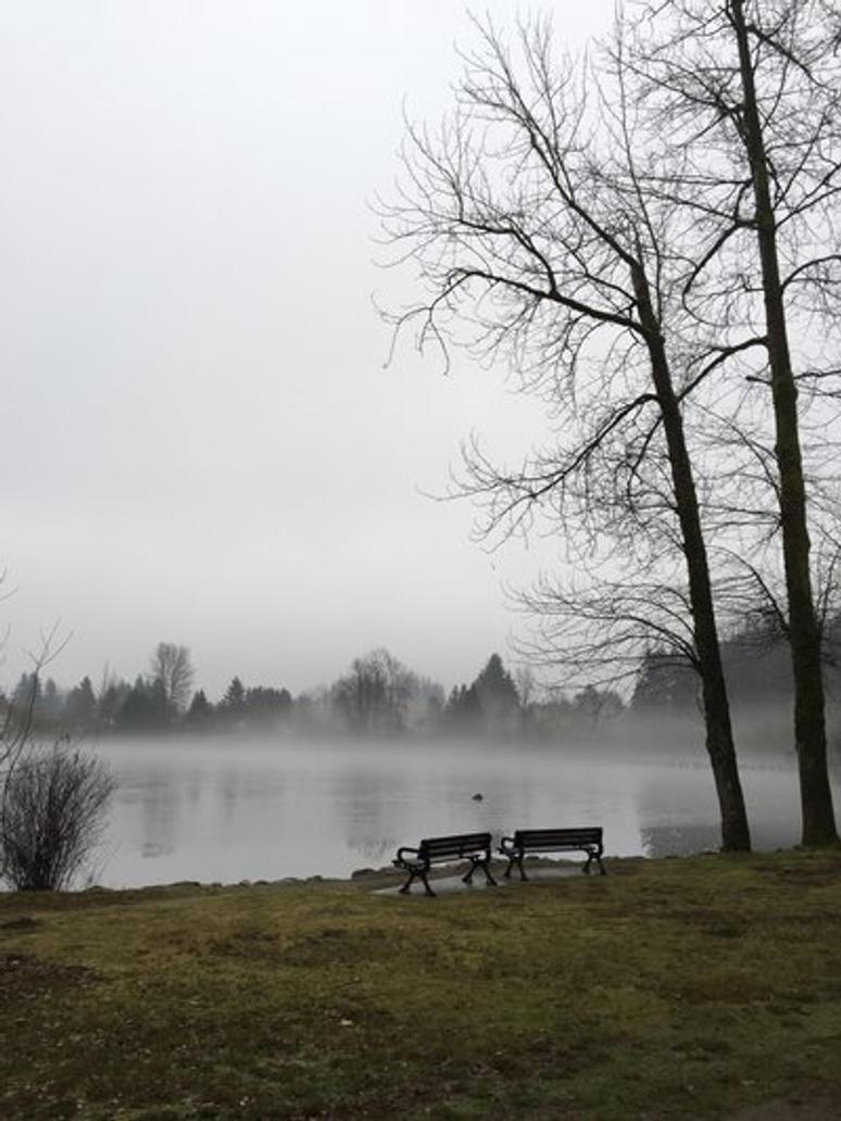 Mill Lake  by Crampt