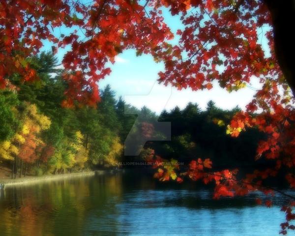 Autumn at Walden Pond by kalliope94041