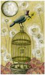 Golden Key of BirdCreek Crow
