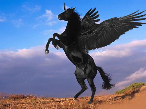 Rekindling Past Flames (Erosaf) Dark_Pegasus_by_Rupture_Alchemist