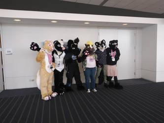 Skunk Panel At AnthroCon 19'