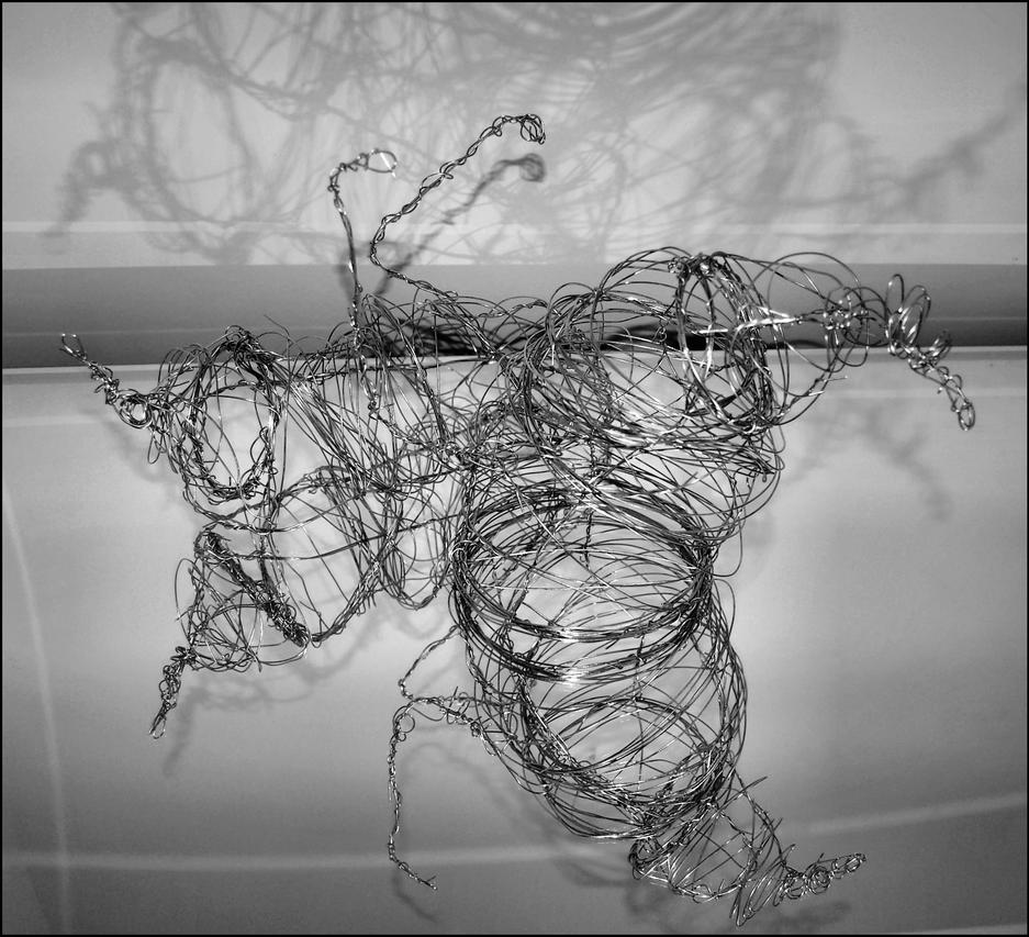 Wire sculpture on mirror by mikes-toothbrush on DeviantArt