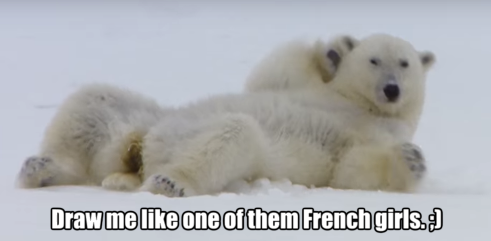 Sexy Polar Bear Meme By Zorathetwilightdrake On Deviantart