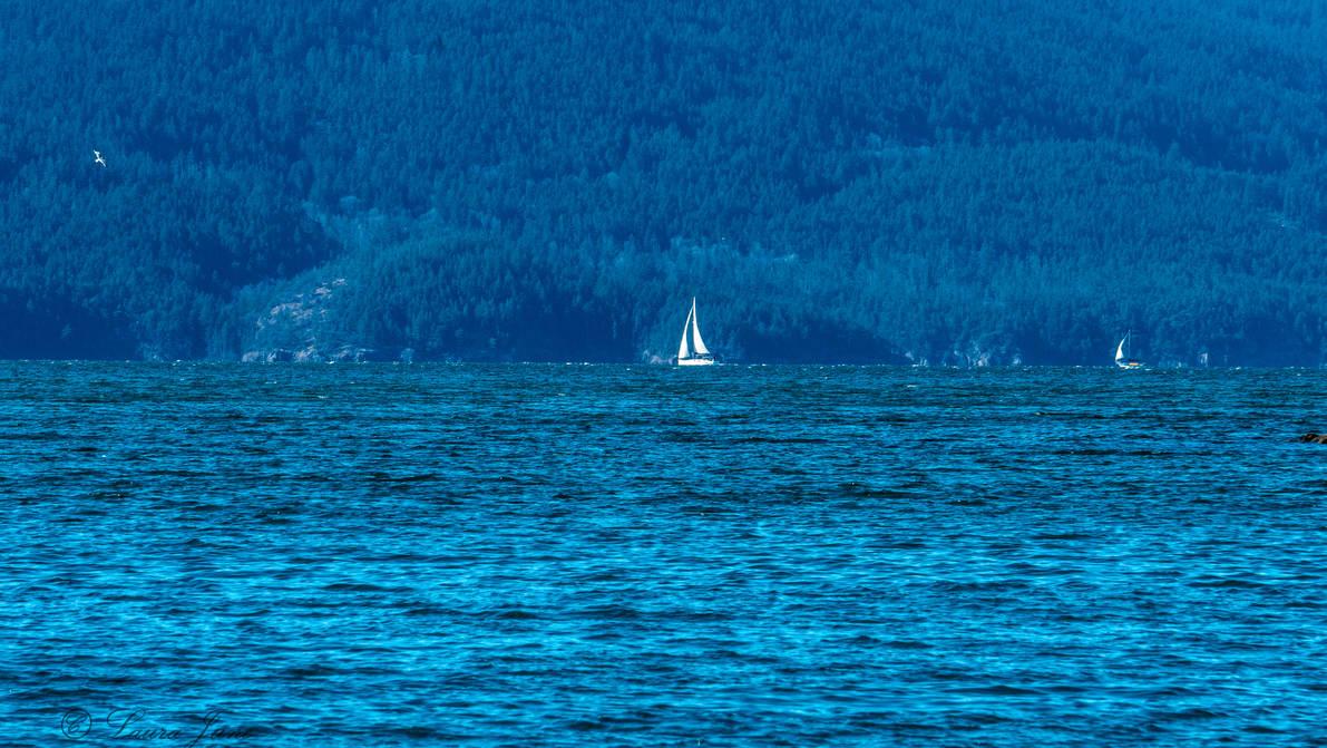 Sailing the Blue by LashyJ