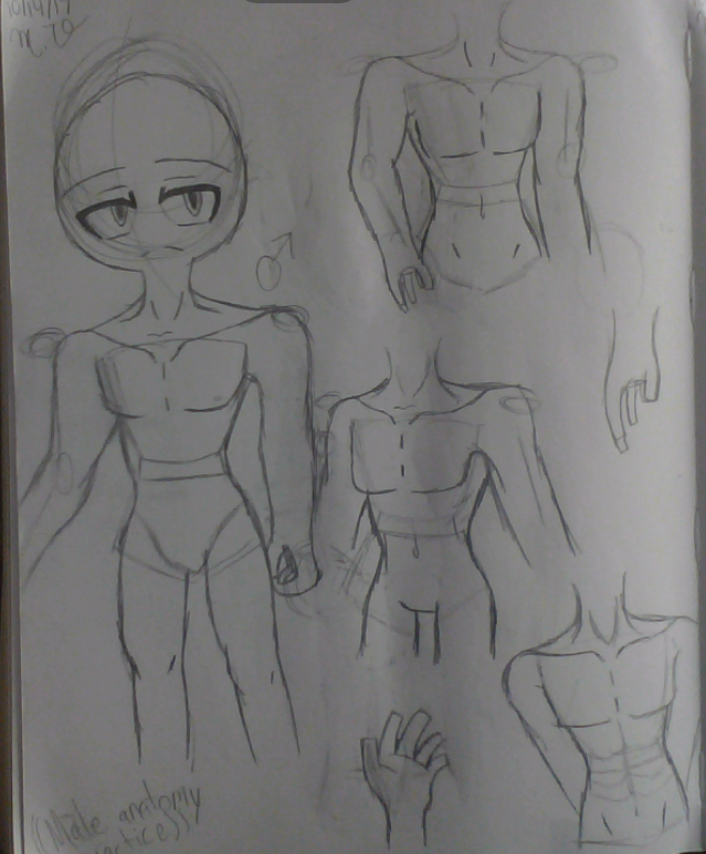 Male anatomy practice by Cupcake2075 on DeviantArt