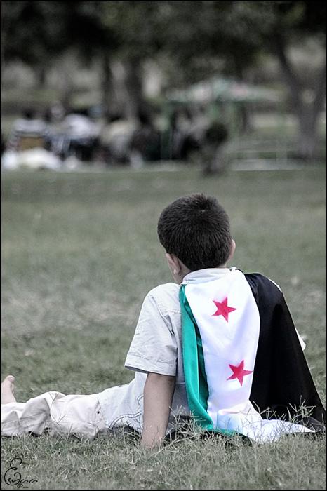 تصاميم الثورة السورية 2012 ، جديد تصاميم الثورة السورية 2012 ، احدث تصاميم الثورة السورية 2012 ، تصاميم ا