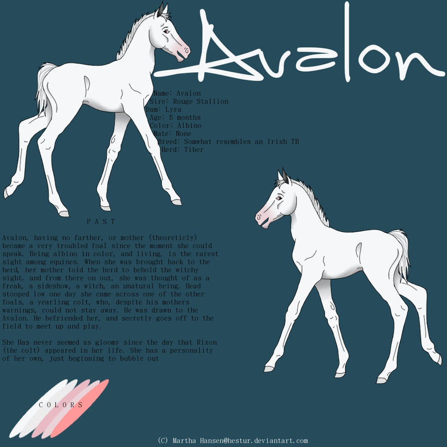 Avalon Reference Sheet by hestur