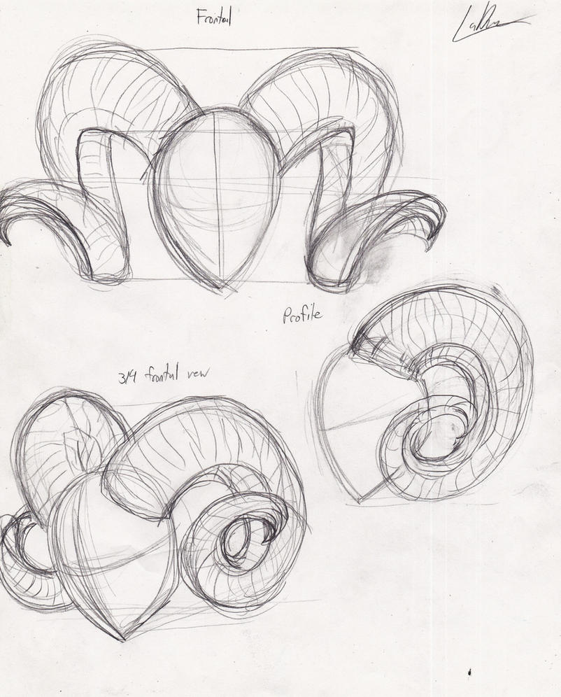Devil Face Line Drawing : Demon horn reference ram horns by captain ladue on