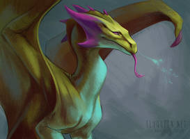 Acidic Dragon by FlyQueen