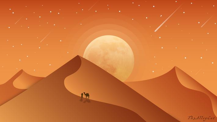 Moonset on the desert