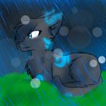 .:100TC:.  Under the rain...