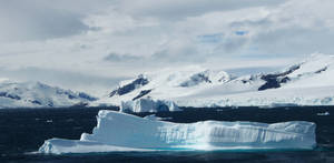 Antartica by maxtengu