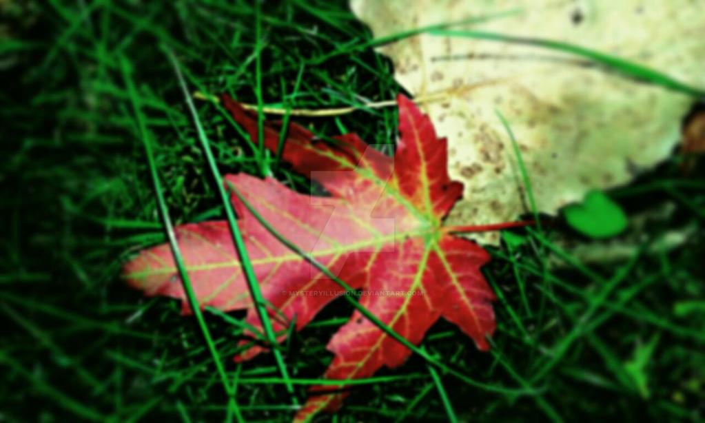 [} autumn's vibrancy {] by Mysteryillusion