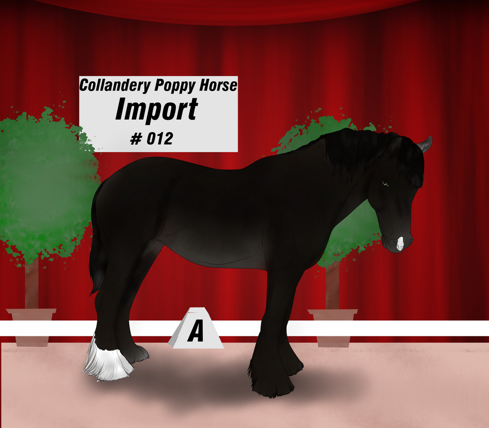 Collandery Poppy Horse #012 by NorthernMyth