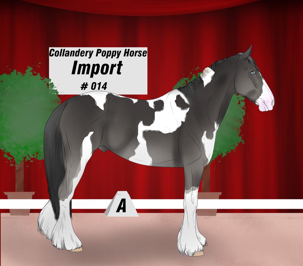 Collandery Poppy Horse #014 by NorthernMyth