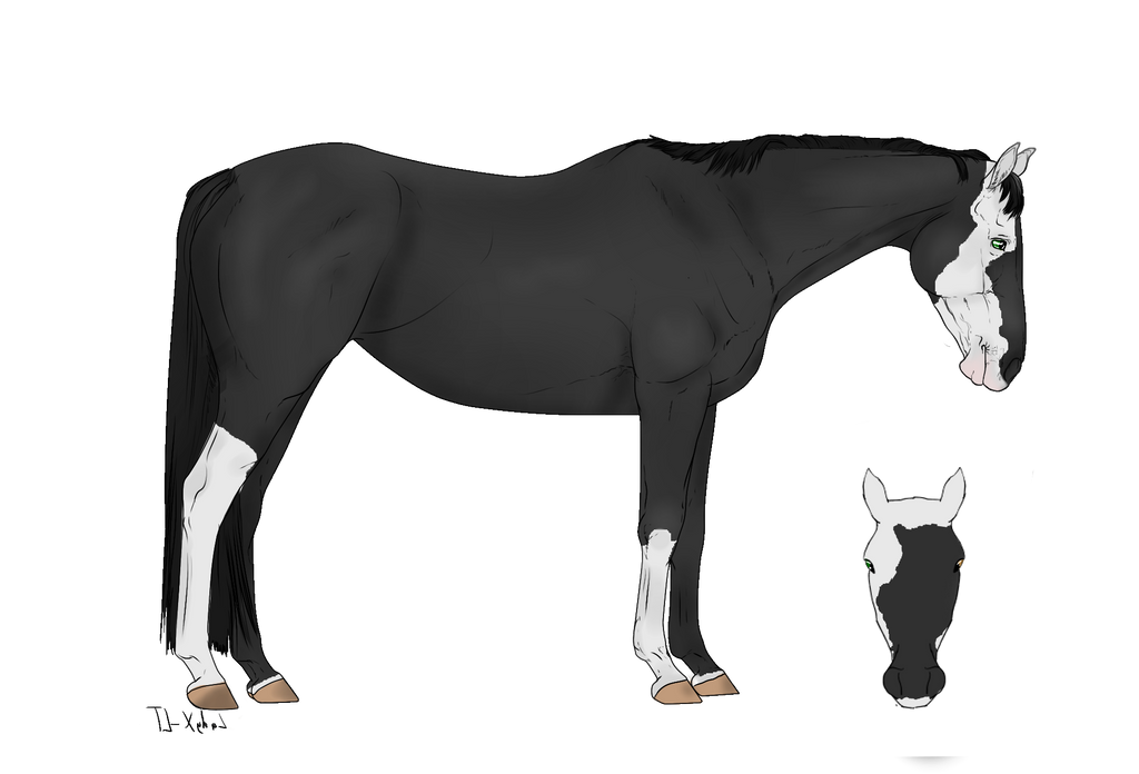 Horse Adopt - SOLD by NorthernMyth