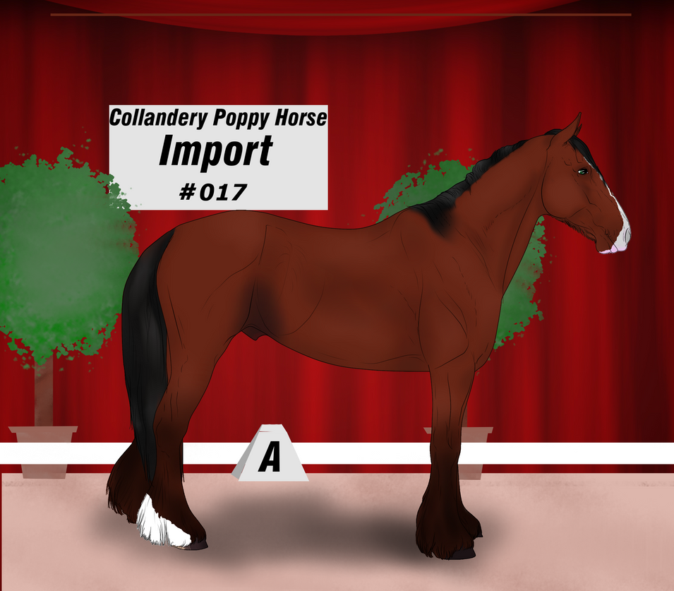Collandery Poppy Horse #017 by NorthernMyth