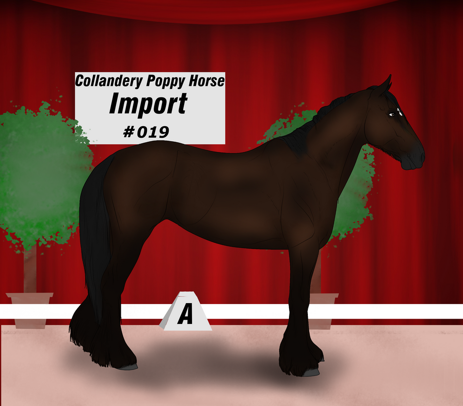 Collandery Poppy Horse #019 by NorthernMyth