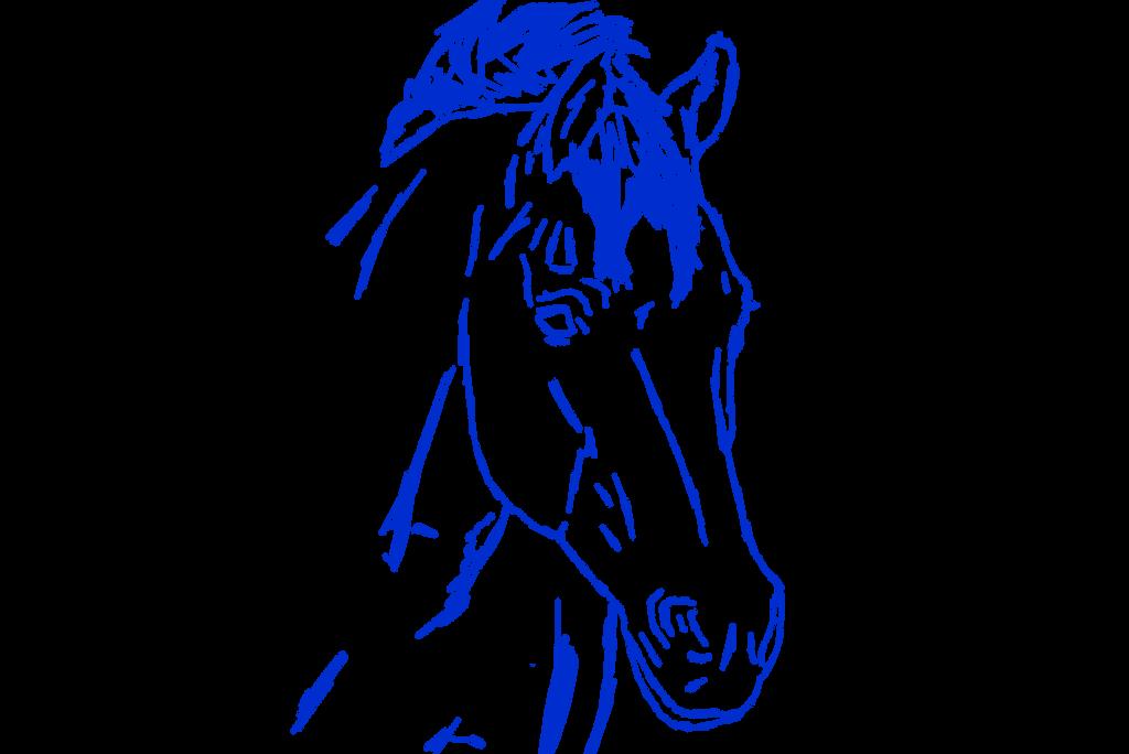 Horse Head Sketch by NorthernMyth