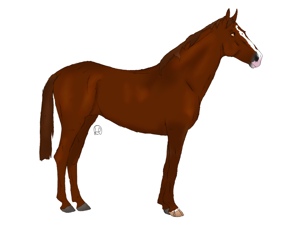 Design for FriesianBreeze by NorthernMyth