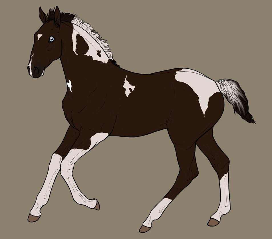 Hollendart Foal Design by NorthernMyth