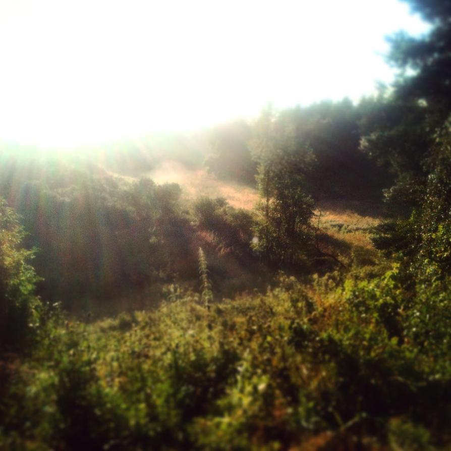 Morning by NorthernMyth
