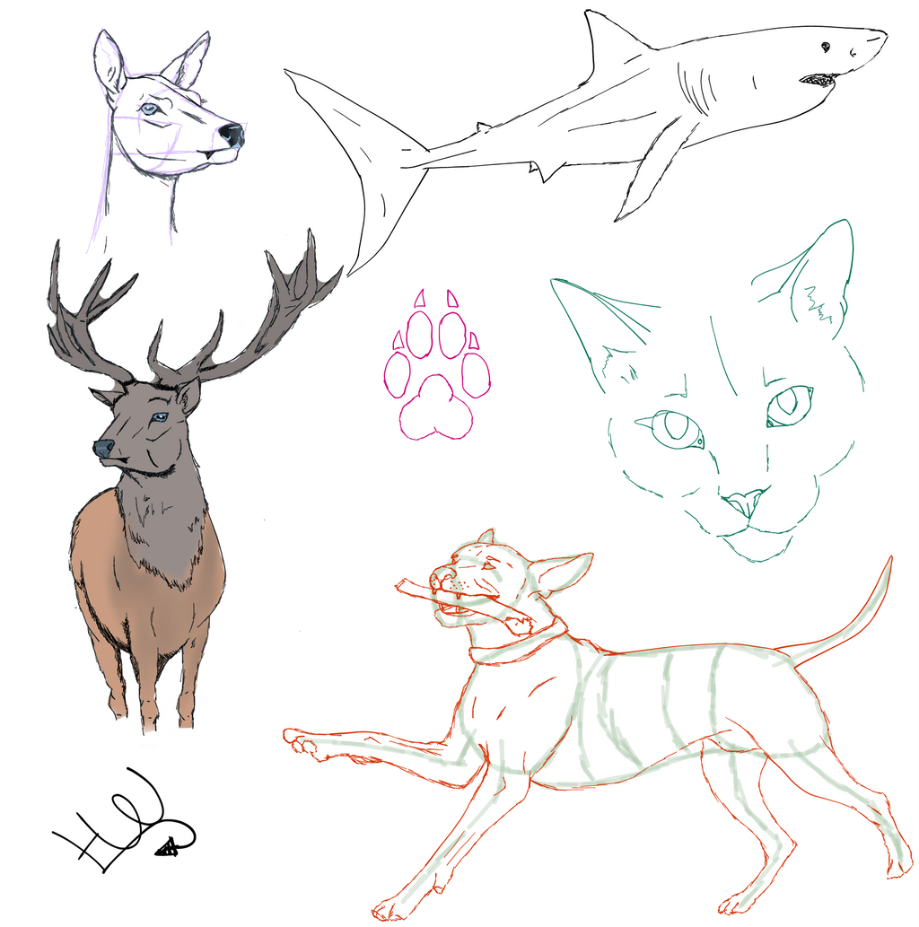 Sketches by NorthernMyth