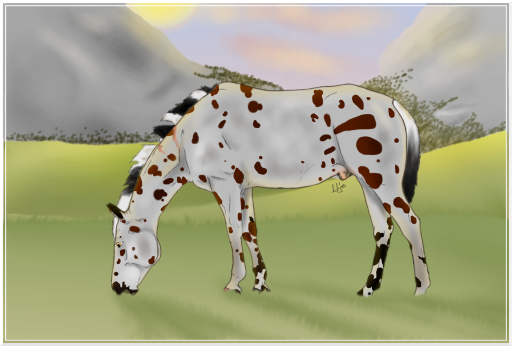 Completed YHH  for SilverEyedHorse by NorthernMyth