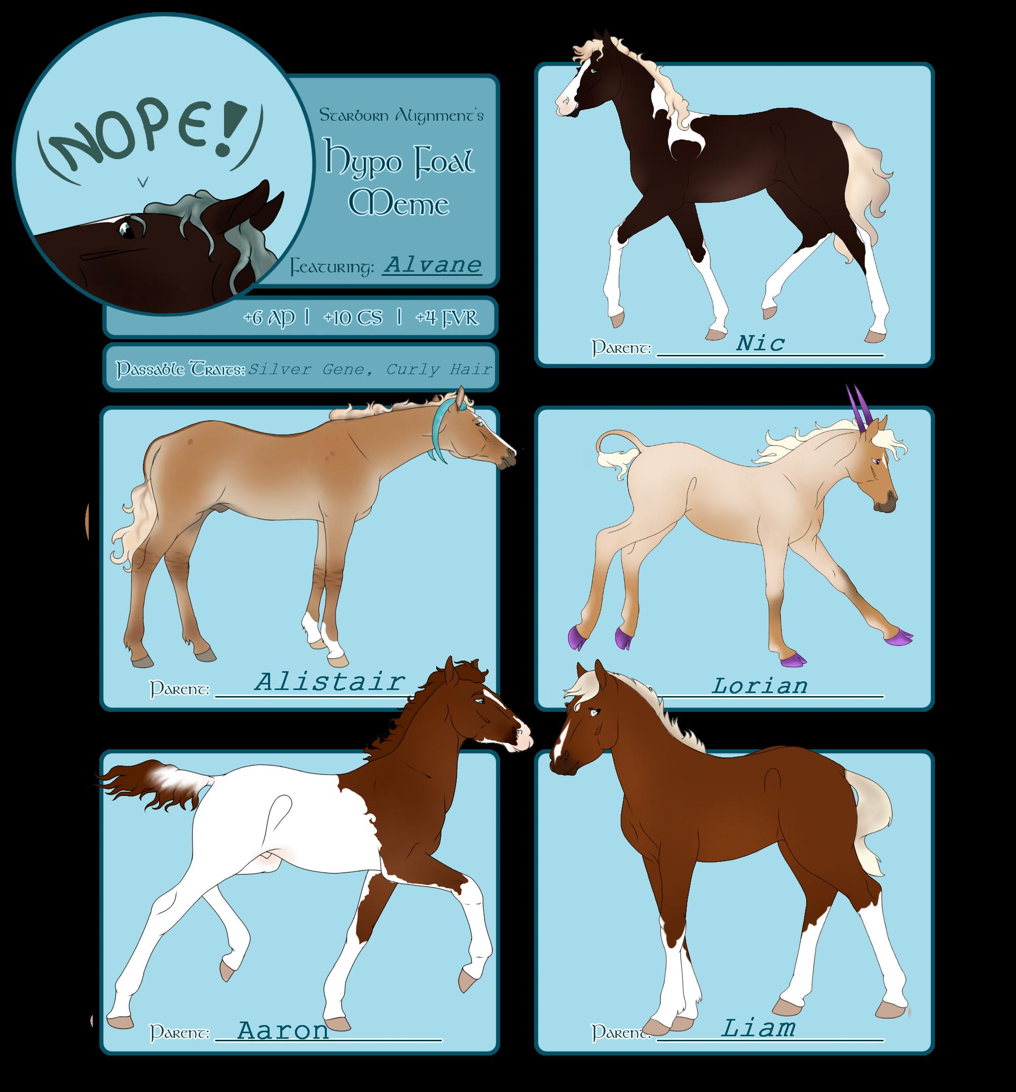 SA | Alvane Foal Meme by NorthernMyth
