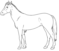 F2U   Thoroughbred Lines