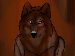 Brown Wolf by KaylaTheWolf13