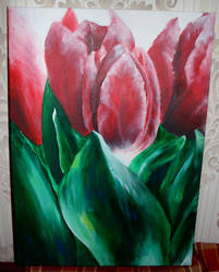 Tulip by schlachthof