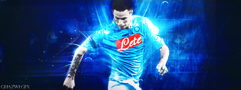 Hamsik by Ghazwi-Mohamed