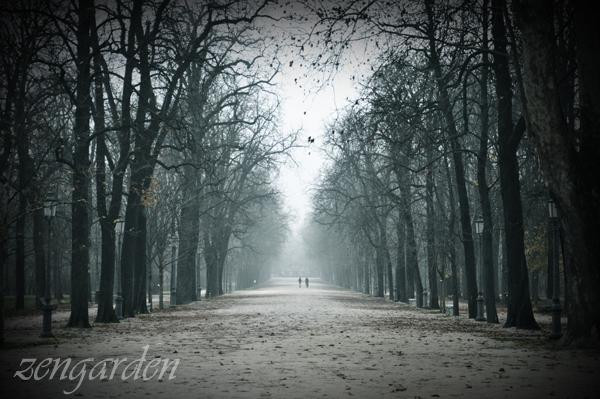 Fog by zen-garden
